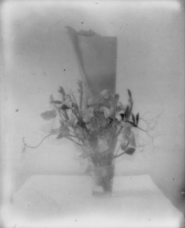 UNTITLED - 2011, Polaroid, 3.9 x 3.1 in. / 9,8  x 8 cm